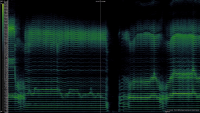 Spectogram of Dag Kargiraa singing