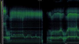 Spectogram of Dag Kargiraa singing
